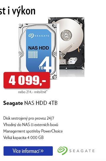 Disk Seagate NAS HDD 4TB