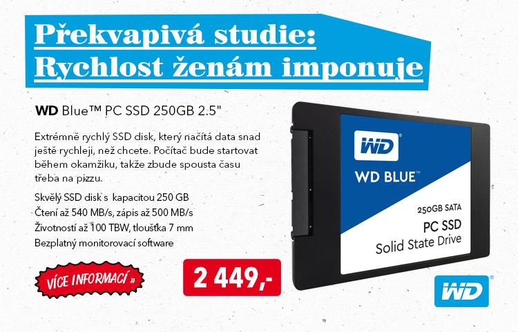 SSD disk WD Blue PC SSD 250GB