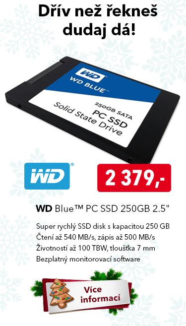 SSD disk WD Blue 250GB