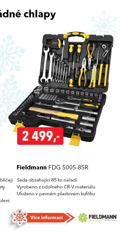 Sada nářadí Fieldmann FDG 5005-85R