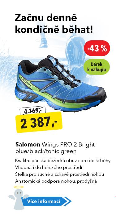 Pánské boty Salomon Wings PRO 2
