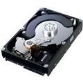 Pevný disk Samsung SpinPoint EcoGreen F2 1500GB
