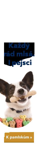 Pamlsky pro psy
