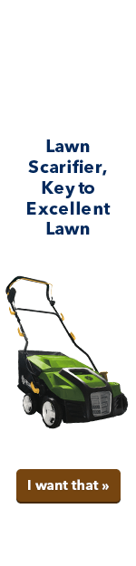 Lawn scarifier, key to excellent lawn