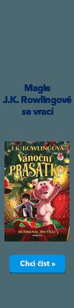 Vánoční prasátko FKP kniha