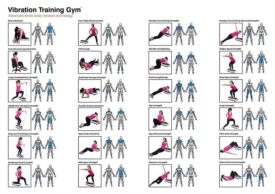 Bodi Tek Vibration Training Gym Fitness Stroj Alza Sk