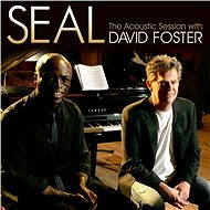 Seal - The Acoustic Session with David Foster