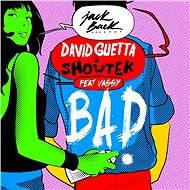 Bad (feat. Vassy) [Radio Edit]