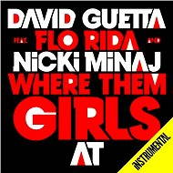 Where Them Girls At (Instrumental)