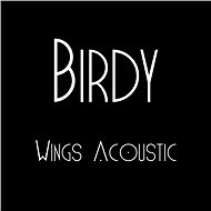 Wings Acoustic