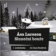 Sluneční bouře - Asa Larsson