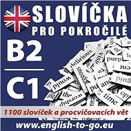 Angličtina – Slovíčka pro pokročilé B2/C1 - kolektív autorov