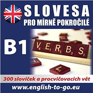 Angličtina – Slovesa pro mírně pokročilé - kolektív autorov