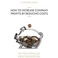 HOW TO INCREASE COMPANY PROFITS BY REDUCING COSTS - Vladimír John