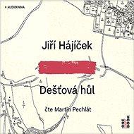 Dešťová hůl [Audiokniha] - Jiří Hájíček