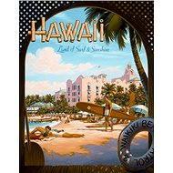 Blechschild Hawaii