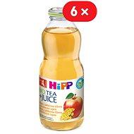 HiPP BIO Nápoj s jablečnou šťávou a fenyklovým čajem - 6x 500ml