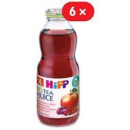 HiPP BIO Nápoj s ovocnou šťávou a šípkovým čajem - 6x 500ml
