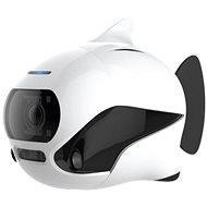 BIKI: underwater fish drone - Smart drone
