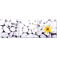 Wall clocks - pebbles canvas