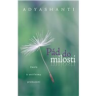 Pád do milosti - Adyashanti