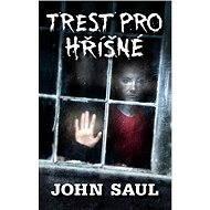 Trest pro hříšné - John Saul