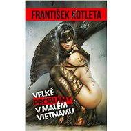 Velké problémy v Malém Vietnamu - František Kotleta