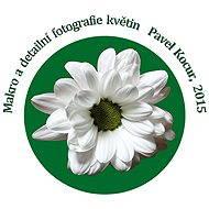 Makro a detailní fotografie květin - Pavel Kocur