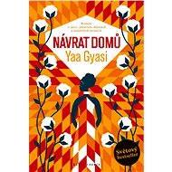 Návrat domů - Yaa Gyasi