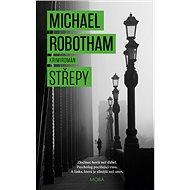Střepy - Michael Robotham