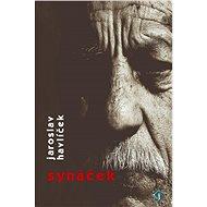 Synáček - Jaroslav Havlíček