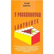 V poschodovom labyrinte - Viliam Marčok