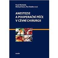 Anestezie a pooperační péče v cévní chirurgii - Pavel Michálek, Michael Stern, Petr Štádler, et al.