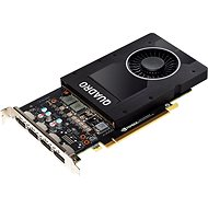 HP NVIDIA Graphics PLUS Quadro P2000 - Grafikkarte