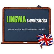 Lingwi slovná zásoba - Angličtina