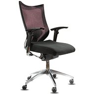 Spinergo Office burgundy - Office Chair