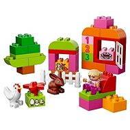 LEGO DUPLO 10571 LEGO® DUPLO® Große Steinebox Mädchen - Baukasten
