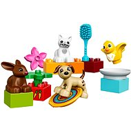 LEGO Duplo 10838 Family Pets - Building Kit