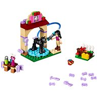 LEGO Friends 41123 Foal's Washing Station - Building Kit