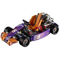 LEGO Technic 42048 Renn-Kart