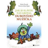 Jak si Slávek načaroval dubového mužíčka - Kniha