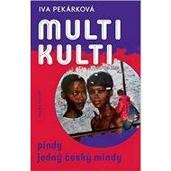 Multikulti: Pindy jedný český mindy - Kniha