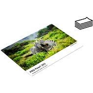FOMEI Jet PRO Pearl 265 10x15/20