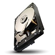 Seagate Constellation ES.3 4TB