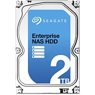 Seagate Enterprise NAS HDD 2000 GB