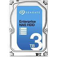 Seagate Enterprise NAS HDD 3000GB