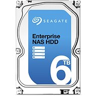 Seagate Enterprise NAS HDD 6 TB
