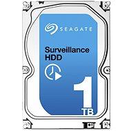 Seagate Surveillance 1000 GB + Rettungs