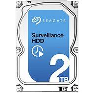 Seagate Surveillance 2,000 GB
