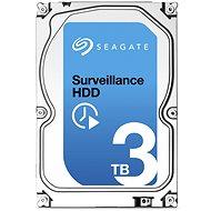 Seagate Surveillance 3000 GB + Rettungs